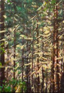 ToubkalMorrocco1(TreesLight)